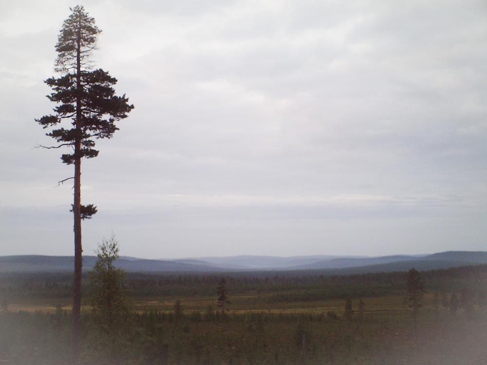 Paltojärventien maisemia kusitauolla.